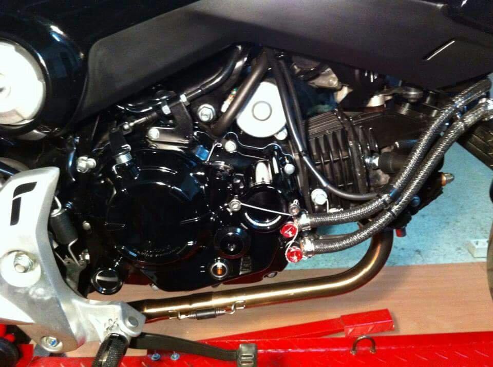 Obijuanito bike-1465328663268.jpg