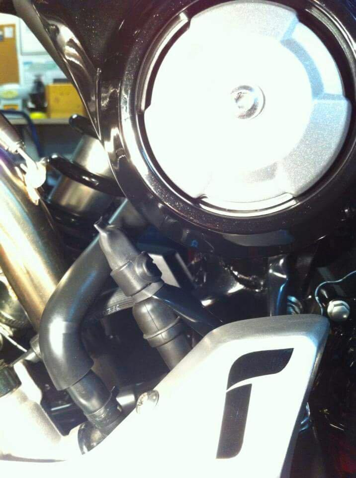 Obijuanito bike-1465328800430.jpg