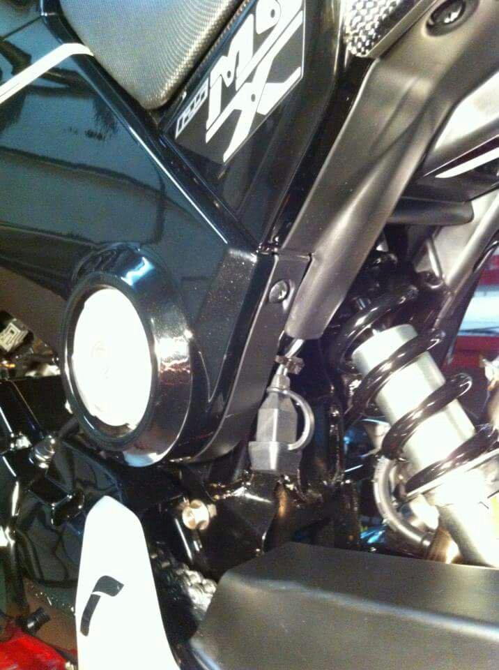 Obijuanito bike-1465328908728.jpg