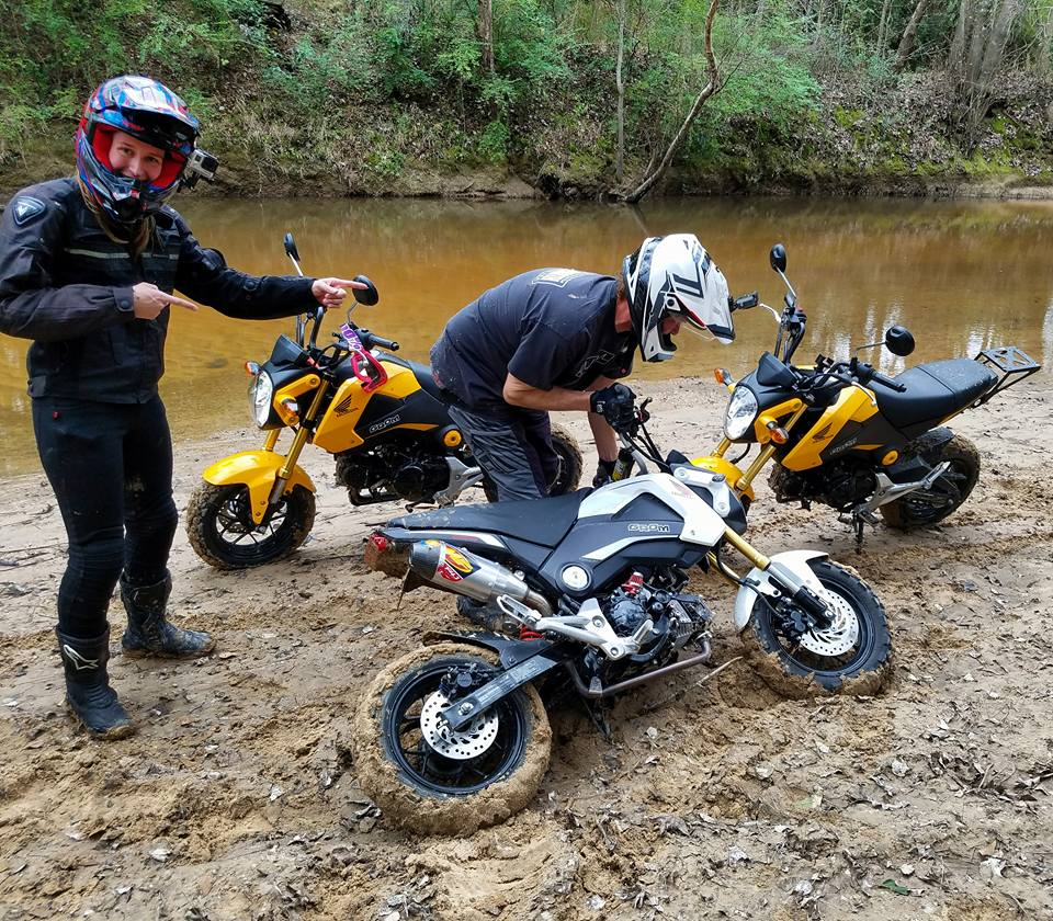 Grom Abuse! The Struggle is Real - Offroad Enduro Gromming-15873216_1229492507086615_3357283927470154043_n.jpg