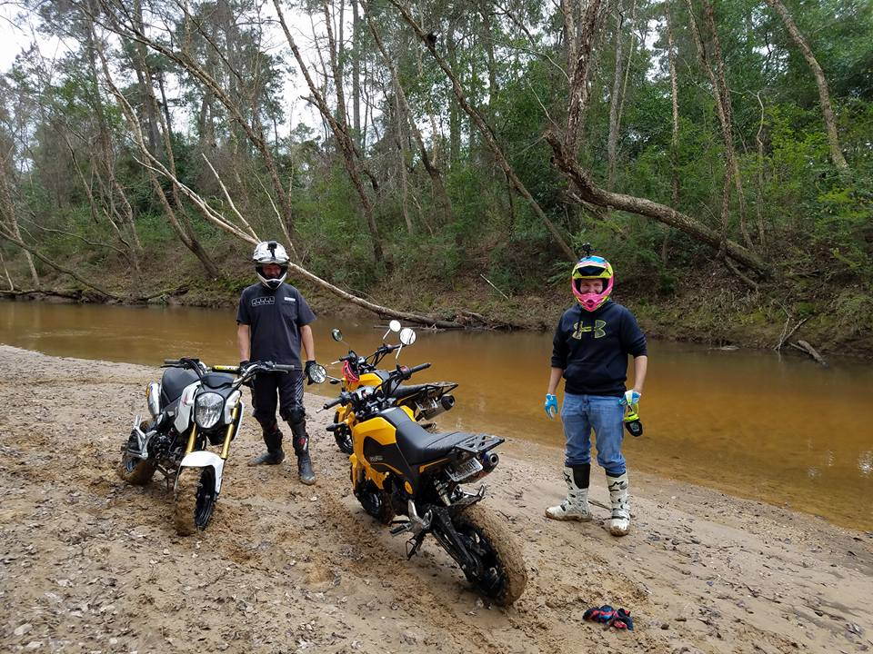 Grom Abuse! The Struggle is Real - Offroad Enduro Gromming-15940409_1229492647086601_194025425550107082_n.jpg