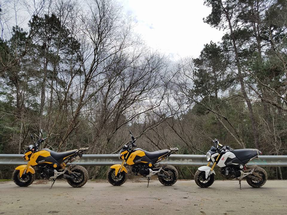 Grom Abuse! The Struggle is Real - Offroad Enduro Gromming-15966250_1229492563753276_4019924264833277434_n.jpg