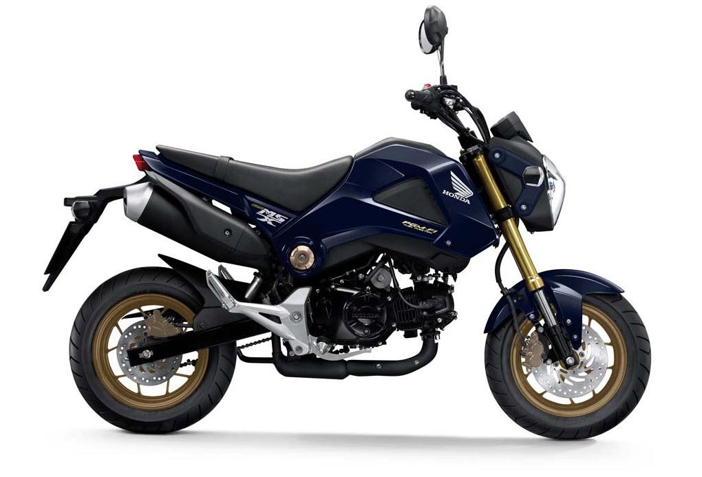 Gold OEM Honda wheels-2014-honda-msx125-grom-candy-pisces-blue.jpg