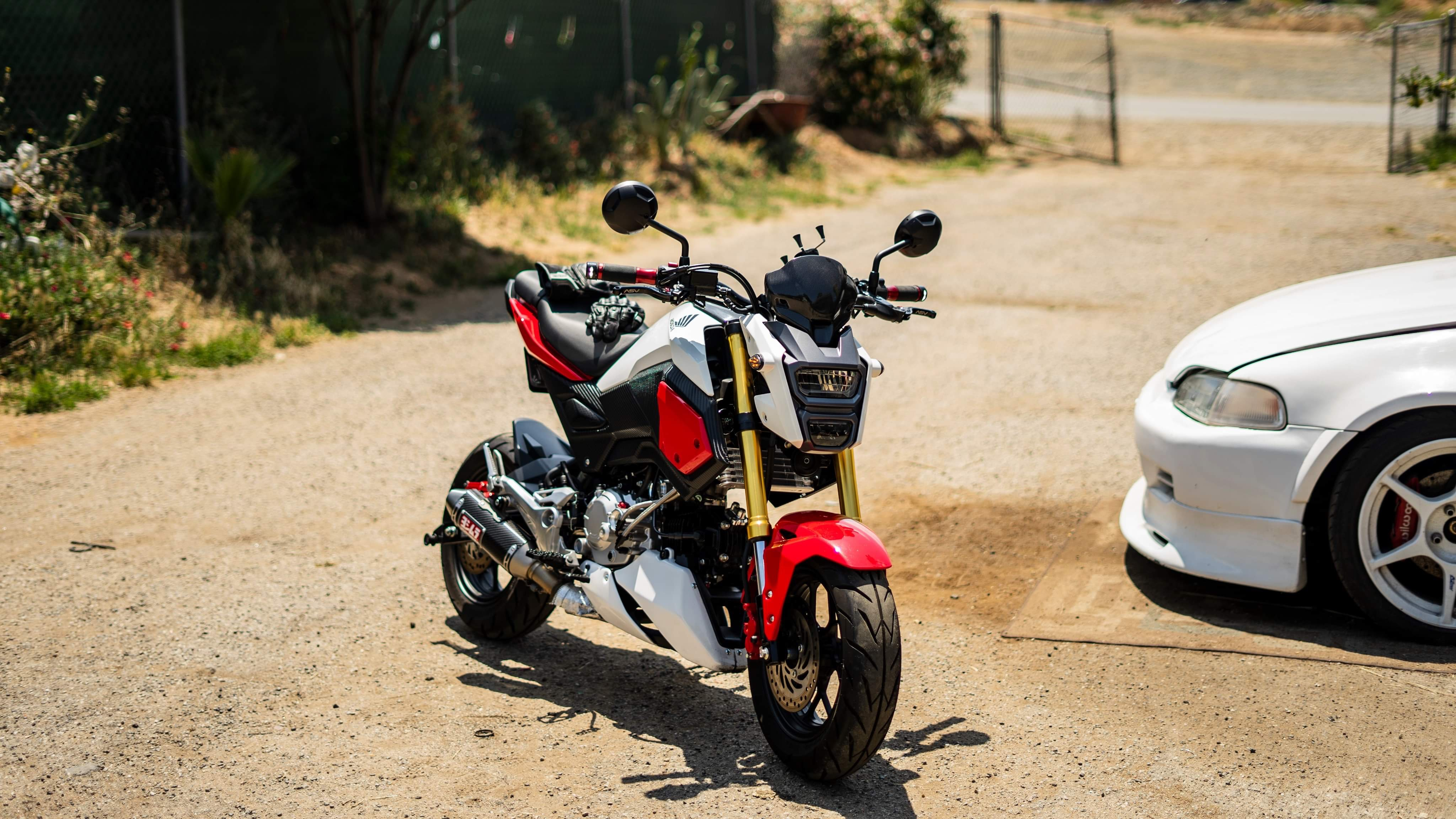 """The """"What did you do to your Grom today?"""" thread-2bd355ed-f884-4cb9-b843-2d4f7218711d.jpeg"""