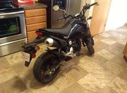 Composimo Tidy Tail and Tyga carbon fiber exhaust installed-grom2.jpg