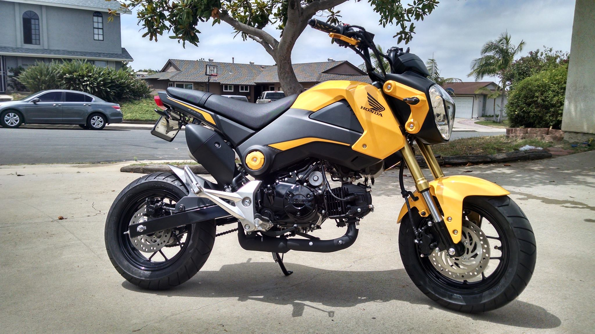 New 2015 Grom owner San Diego