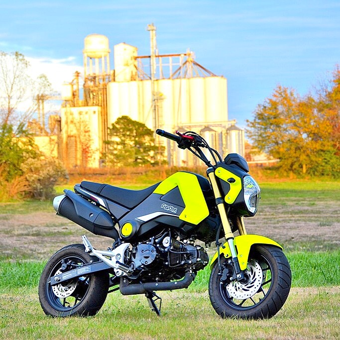 "Honda Grom Build >> Build: Flexxx's 2015 Honda ""Gromlin"" Build"