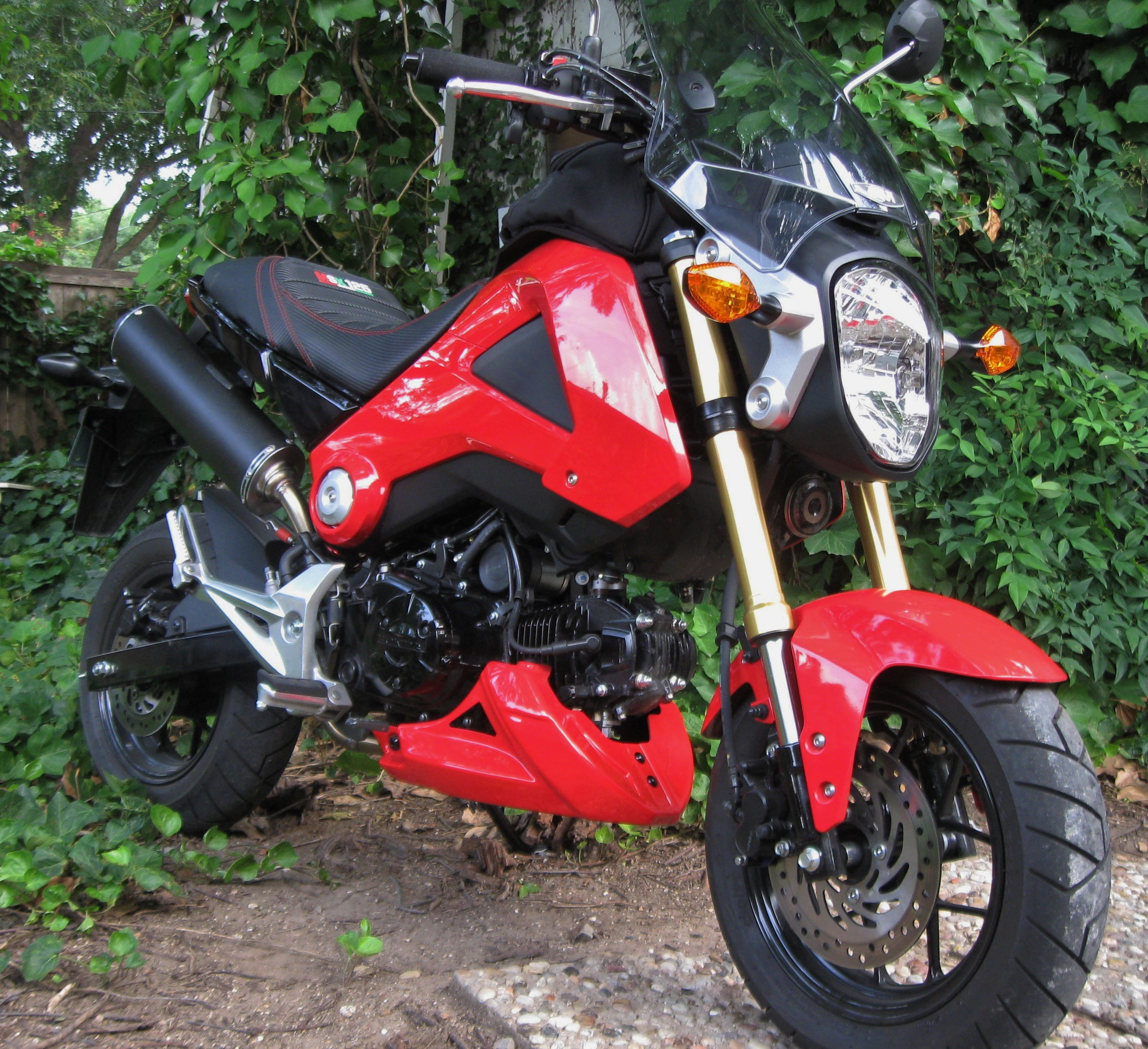 Top Speed on your Grom? - Page 8