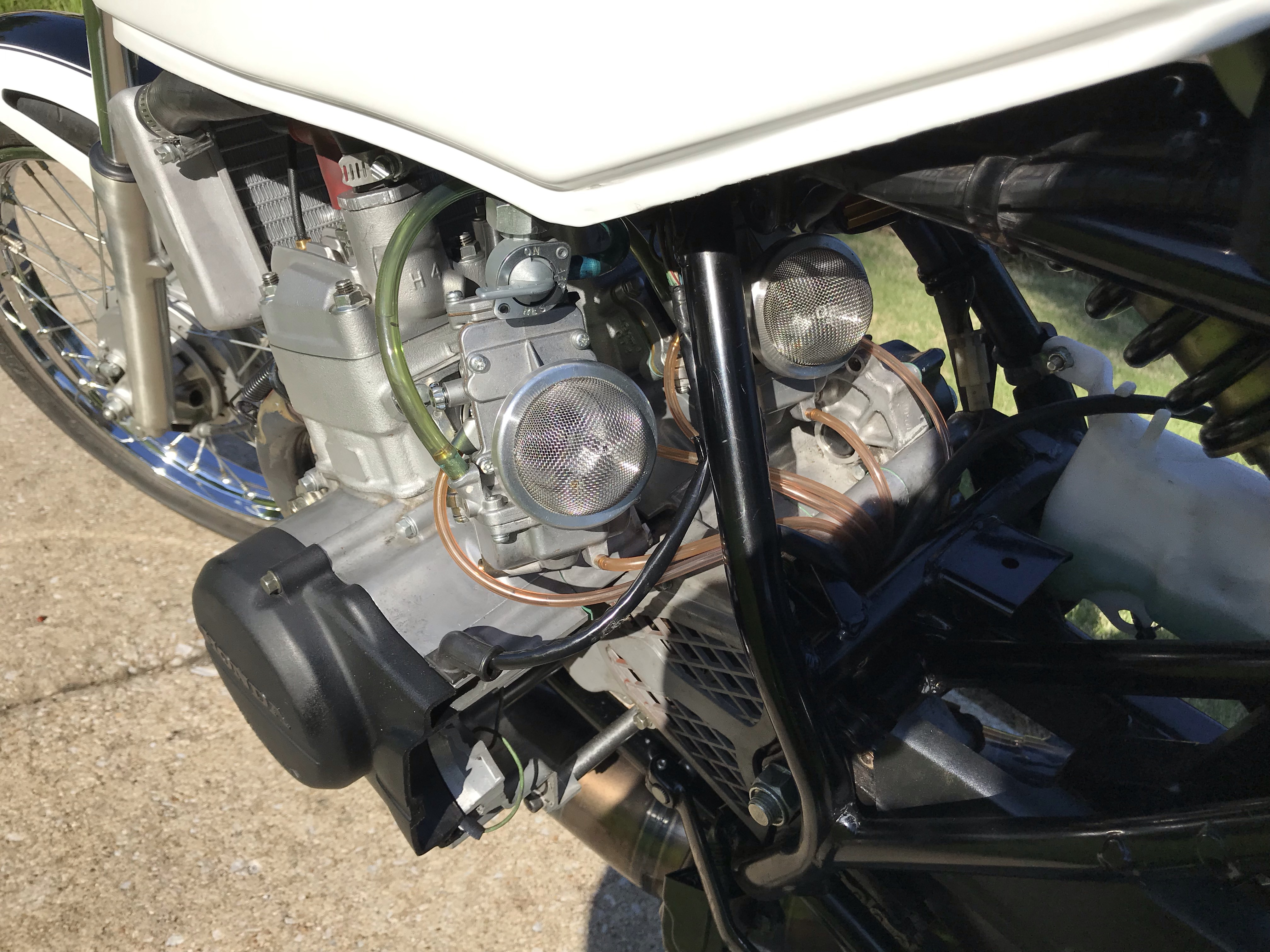 Grom Alternative? Honda NS50F-img_0579.jpg