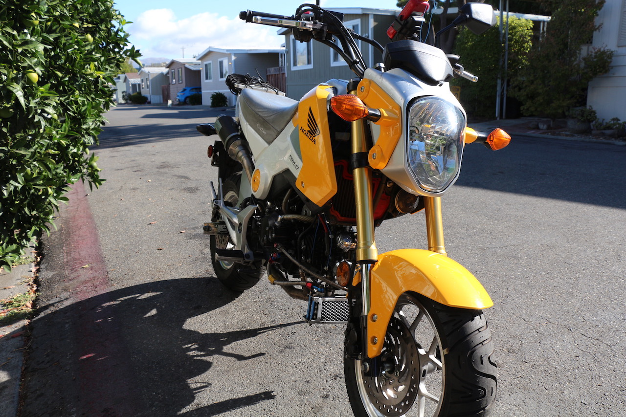 Did some changes to the 2014 yell-wht gorm-img_5350-copy.jpg