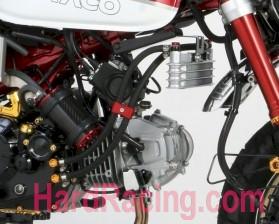NEW PRODUCT :  Kitaco Oil Cooler for the Honda Monkey-kitaco360-1300100ex1.jpg
