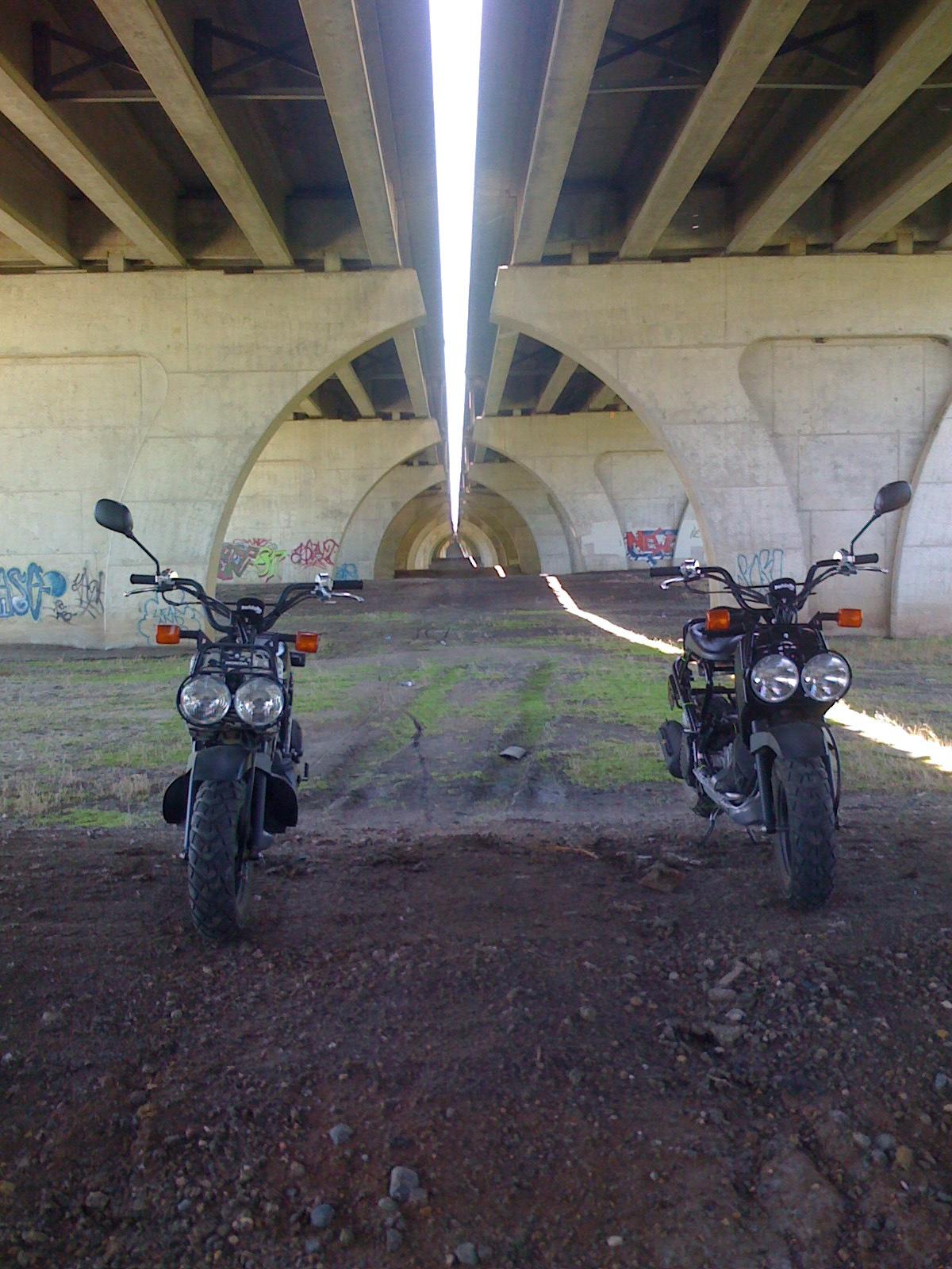Minnesota riders post here!!!!-suburban-mission.jpg
