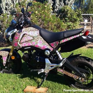 Leopard Rose Grom 2