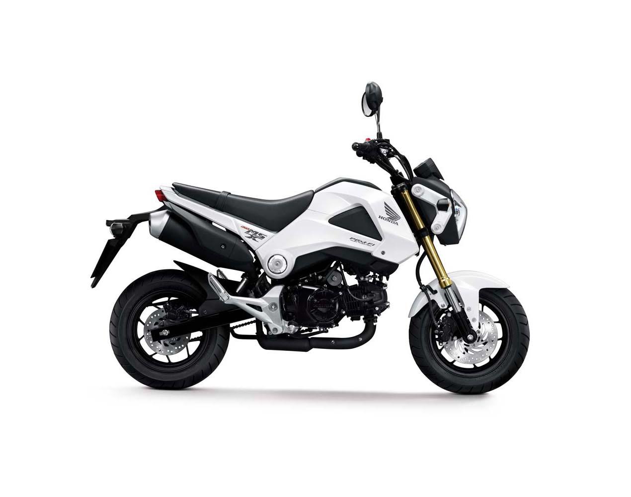 anyone into small motorcycles? honda grom coming soon